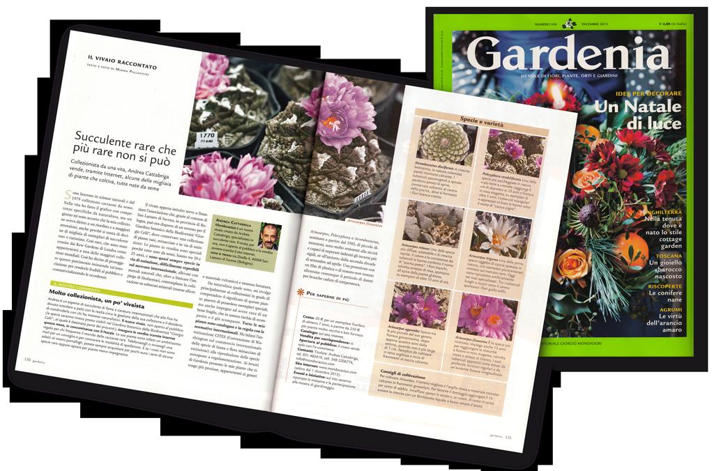 Gardenia pubblica un articolo su Mondocactus