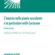 MQ01 - L'innesto nelle succulente