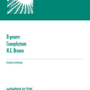 MQ05 - Note su Conophytum
